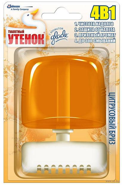 """Подвесной очиститель для унитаза """"Цитрусовый бриз"""" (55 мл) — фото, картинка"""