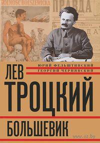 Лев Троцкий. Книга 2. Большевик. 1917-1924 гг. — фото, картинка