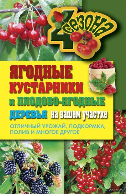 Ягодные кустарники и плодово-ягодные деревья на вашем участке. О. Николаева