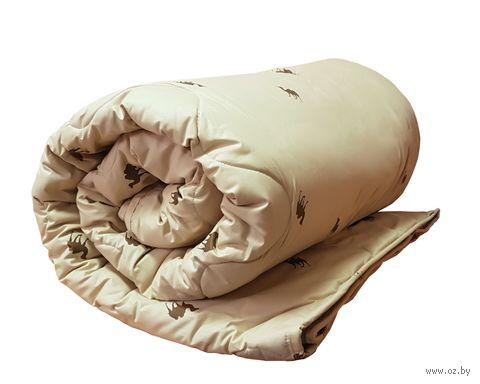 Одеяло стеганое (220х200 см; евро; арт. В.2.05) — фото, картинка