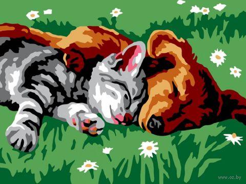 "Картина по номерам ""Котенок и щенок"" (300х400 мм) — фото, картинка"