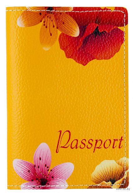 Обложка на паспорт (арт. C1-17-895) — фото, картинка