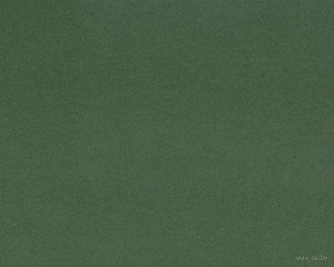 Паспарту (13x18 см; арт. ПУ2740) — фото, картинка