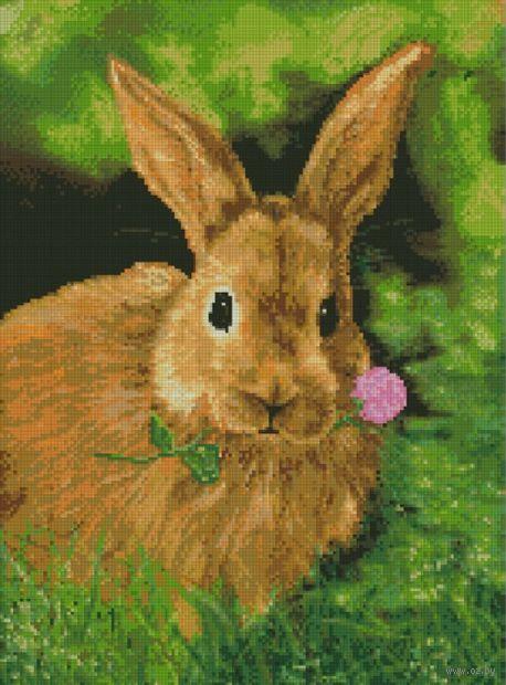 "Алмазная вышивка-мозаика ""Кролик на обеде"" (390х530 мм) — фото, картинка"