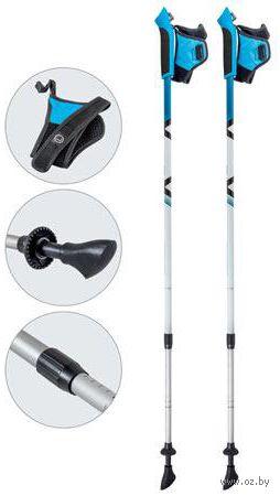 Палки для скандинавской ходьбы двухсекционные AQD-B017 (85-135 см; лазурные) — фото, картинка