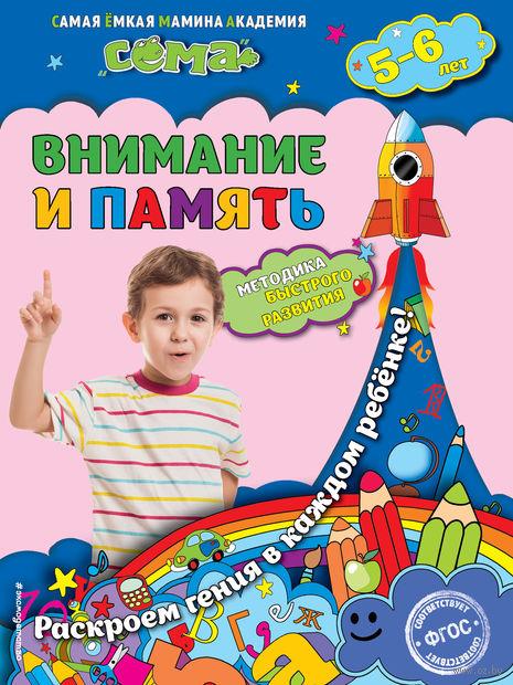 Внимание и память: для детей 5-6 лет. Светлана Липина, Татьяна Маланка