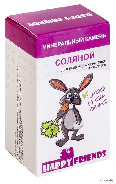 Камень минеральный для грызунов и кроликов (30 г; соляной) — фото, картинка