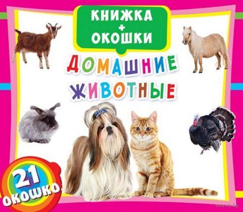 Домашние животные. Книжка+окошки — фото, картинка