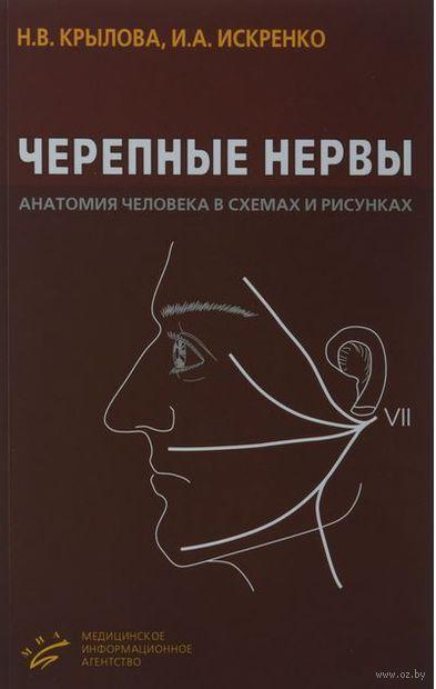 Черепные нервы. Анатомия человека в схемах и рисунках. Нина Крылова, Ирина Искренко