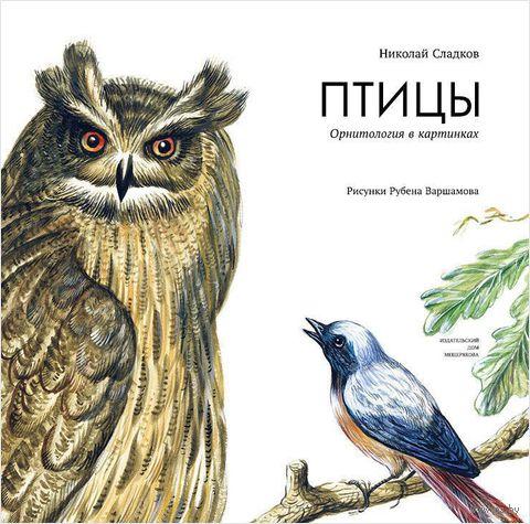 Птицы. Орнитология в картинках. Николай Сладков