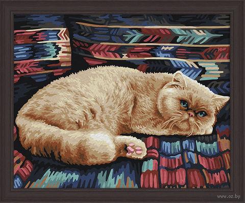 "Картина по номерам ""Персидский кот"" (400х500 мм) — фото, картинка"