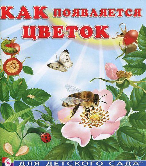 Как появляется цветок. Ирина Гурина