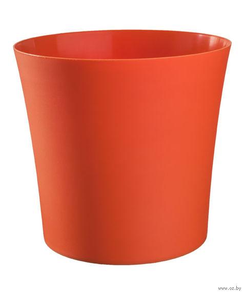 """Цветочный горшок """"Фиолек"""" (16 см; оранжевый) — фото, картинка"""