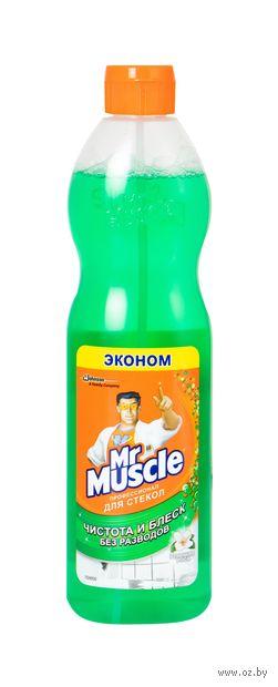 "Чистящее средство для стекол ""Mr. Muscle"" (500 мл)"