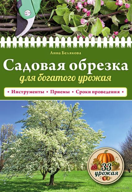 Садовая обрезка для богатого урожая — фото, картинка