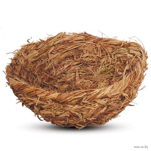 Гнездо для птиц (17 см) — фото, картинка