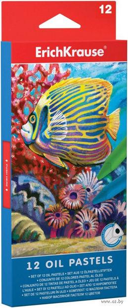 """Пастель масляная """"Erich krause"""" (12 цветов) — фото, картинка"""