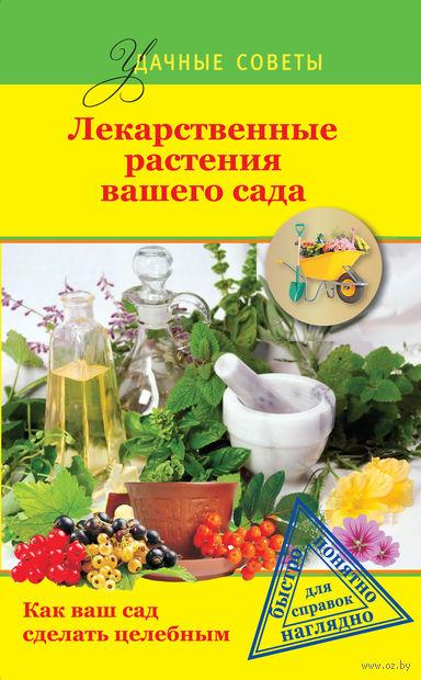Лекарственные растения вашего сада. Г. Левандовский