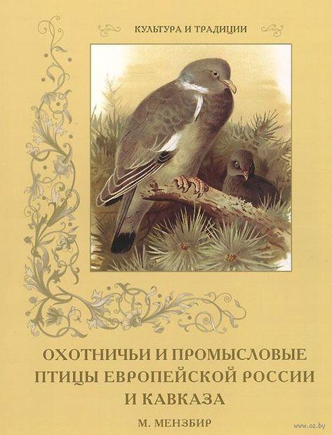 Охотничьи и промысловые птицы Европейской России и Кавказа — фото, картинка