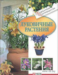 Луковичные растения. Татьяна Дорошенко