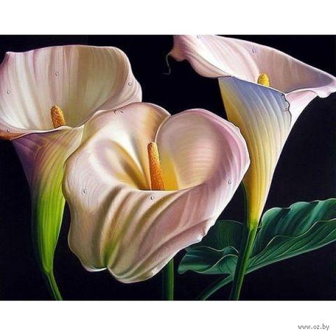 """Алмазная вышивка-мозаика """"Прекрасные каллы"""" (500х400 мм) — фото, картинка"""