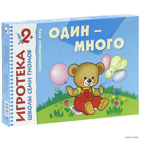 """Развивающая игра """"Игротека ШСГ. Один-много"""""""