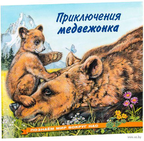 Приключения медвежонка. Ирина Гурина