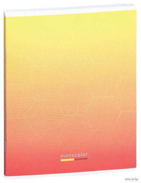"""Тетрадь полуобщая в клетку """"Simple Modern"""" (48 листов; в ассортименте) — фото, картинка"""