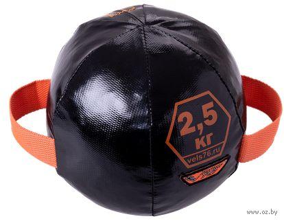 Медбол 2,5 кг (арт. ММБ2,5 ) — фото, картинка