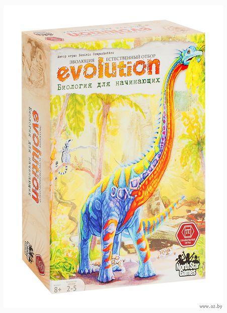 Эволюция. Биология для начинающих — фото, картинка