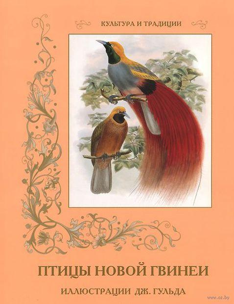 Птицы Новой Гвинеи — фото, картинка