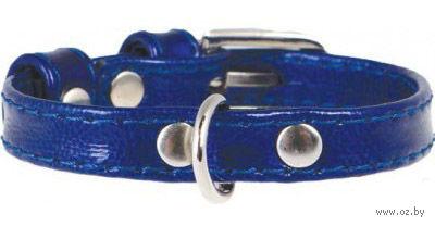 Ошейник для щенков и собак мелких пород (21-29 см; синий)