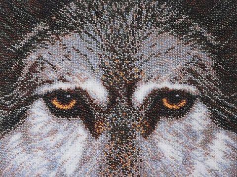 "Вышивка бисером ""Волк"" (270х215 мм; арт. Б-057) — фото, картинка"