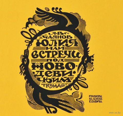 Юлия, или Встречи под Новодевичьим — фото, картинка