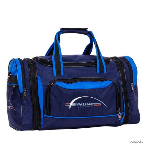 Сумка спортивная 6067-1 (38 л; сине-голубая) — фото, картинка