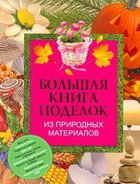 Большая книга поделок из природных материалов — фото, картинка