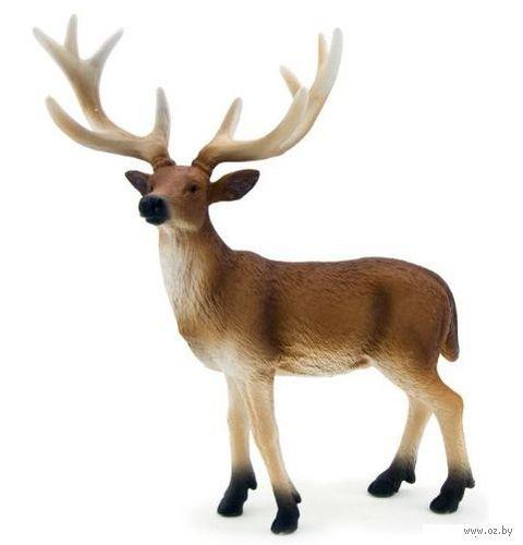 """Фигурка """"Animal Planet: Белохвостый олень"""" (13,5 см)"""