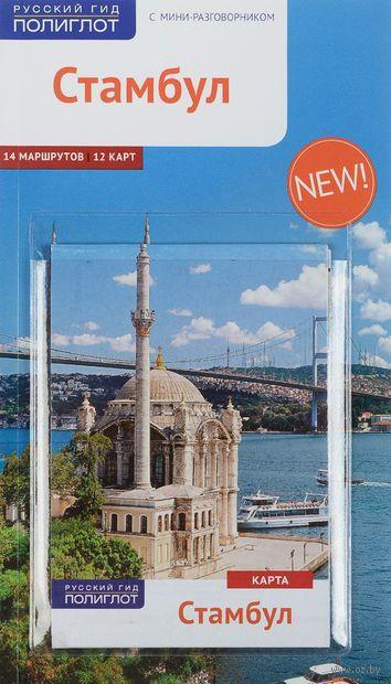 Стамбул. Путеводитель c мини-разговорником (+ карта) — фото, картинка
