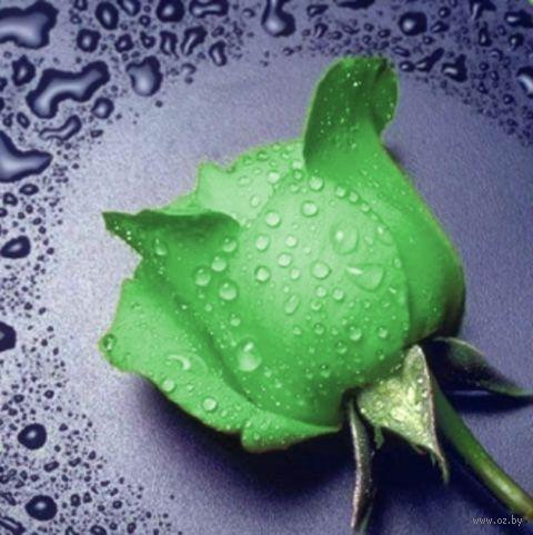 "Алмазная вышивка-мозаика ""Зеленая Роза"" (220х240 мм) — фото, картинка"