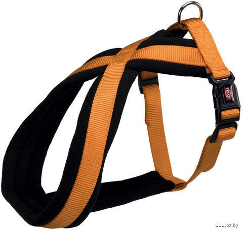 "Шлея ""Premium"" (30-40 см; медно-оранжевая) — фото, картинка"