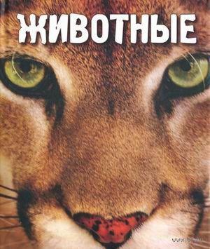 Животные. Ж. Чешир