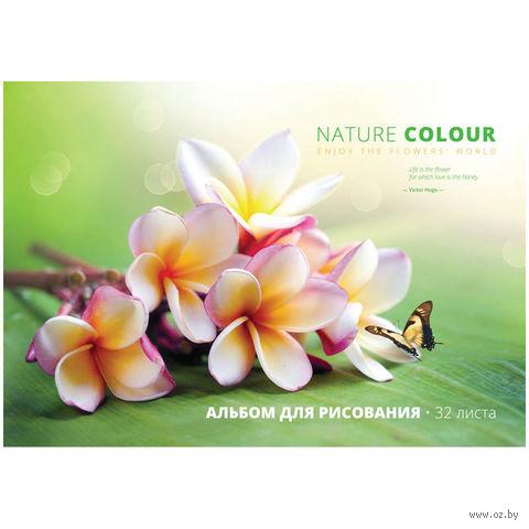 """Альбом для рисования на спирали А4 """"Цветы. Nature Colour"""" (32 листа)"""