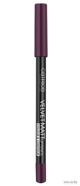 "Контур для губ ""Velvet Matt"" водостойкий (тон: 100, tasty aubergine) — фото, картинка"