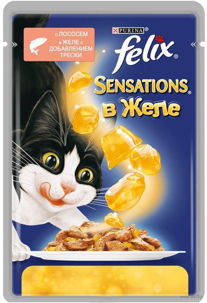 """Пресервы для кошек """"Sensations"""" (85 г; лосось в желе с добавлением трески) — фото, картинка"""
