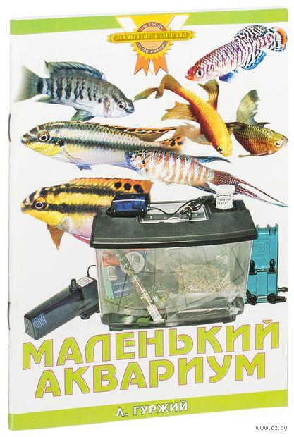 Маленький аквариум. Александр Гуржий