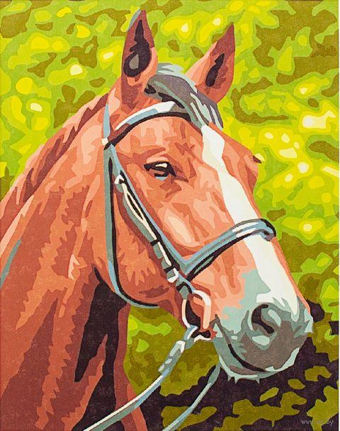 "Картина по номерам ""Лошадь №1"" (300х400 мм)"