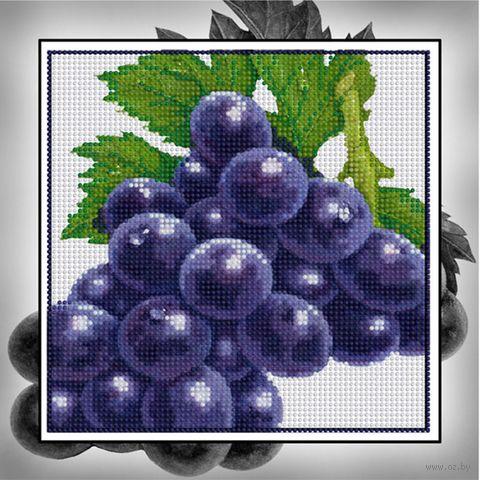"Алмазная вышивка-мозаика ""Виноград"" (250х250 мм) — фото, картинка"