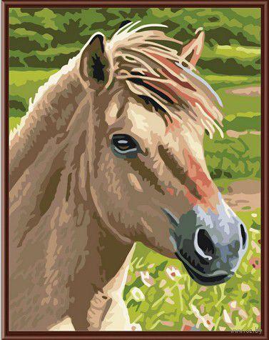 "Картина по номерам ""Лошадь №3"" (300х400 мм)"