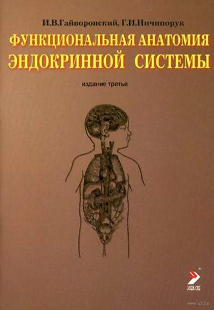 Функциональная анатомия эндокринной системы. Иван Гайворонский, Геннадий Ничипорук
