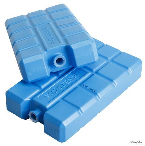 Набор хладоэлементов пластмассовых (2 шт. по 400 г) — фото, картинка